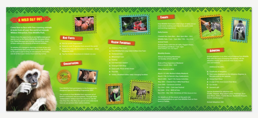 Fota Main Leaflet Back