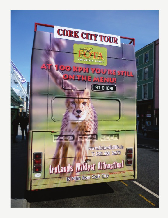 Fota Bus Back